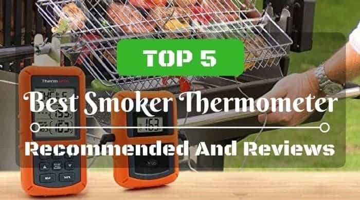 The Best Smoker Thermometers For Smoking & Grilling Reviewed In 2021