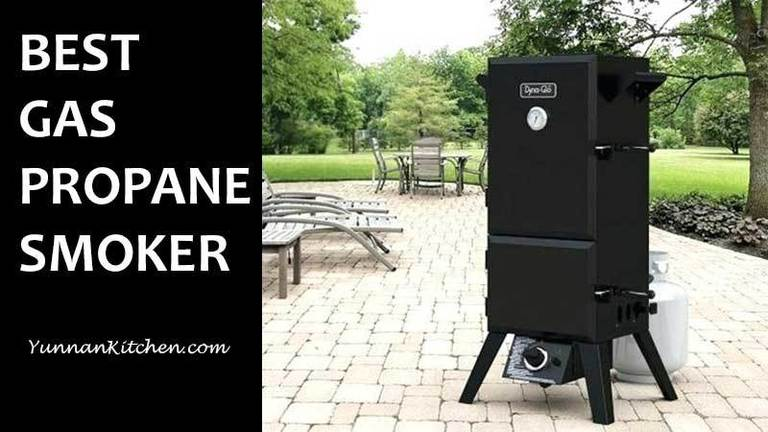10 Best Propane Gas Smokers For The Money In 2021